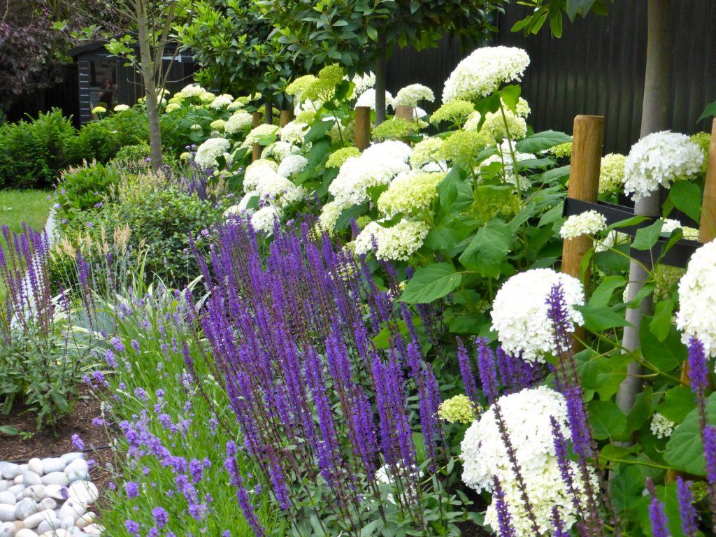 Home - Hampstead Garden DesignHampstead Garden Design