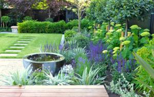 Contemporary Garden Design in London