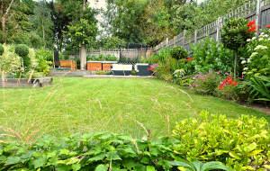 Family Garden Design London