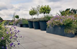 Roof Garden Design in London