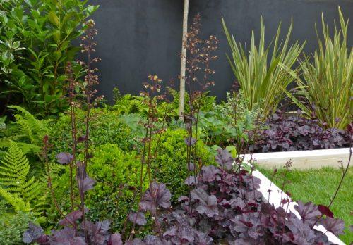 Property Developers Show Garden Design