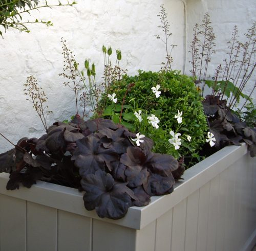 Small Courtyard Garden Design Hampstead