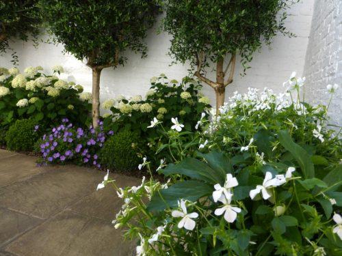Traditional Courtyard Garden Design Hampstead